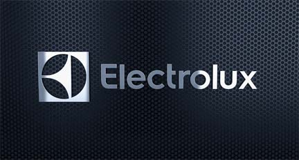Electrolux put on hold plans to invest $250 million in its Springfield, Tenn., plant